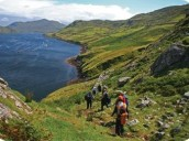 Internship destination Internships in Ireland