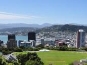 Sensations in Auckland!